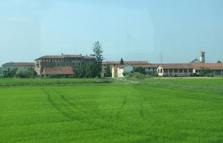 Vehreää maisemaa