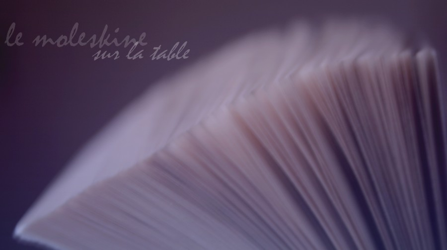 Le Moleskine sur la table