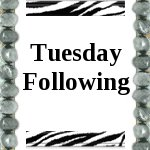 Tuesday Following