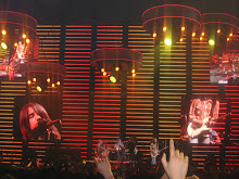 Red Hot Chili Peppers en Bcn (2006)