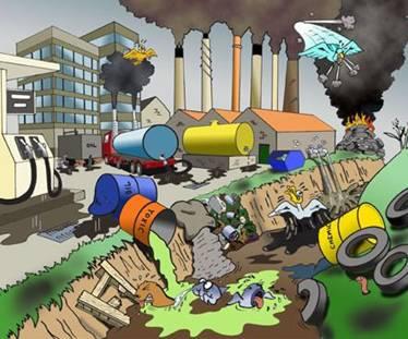 funcion actividad urbana: