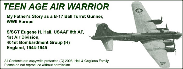 Teen Age Air Warrior