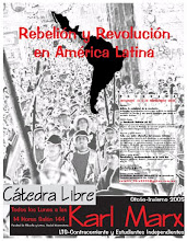 Rebelión y Revolución en América Latina