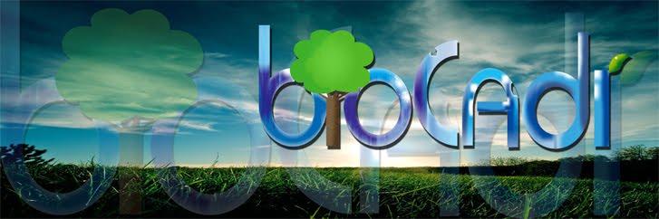 Biocadi