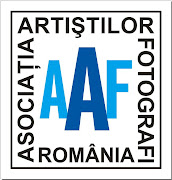 Asociația Artiștilor Fotografi din România