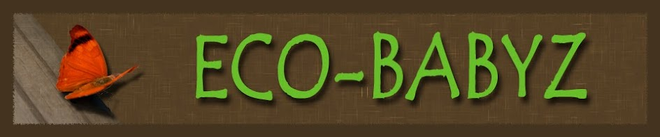 Eco-Babyz