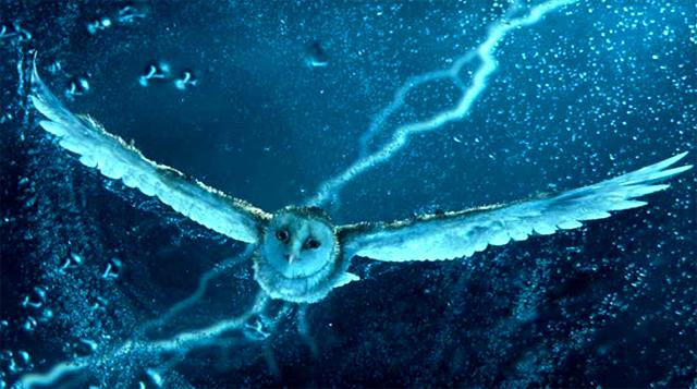 Imagen de la película Ga'Hoole. La leyenda de los guardianes