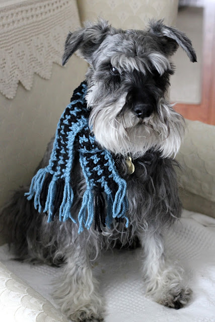 houndstooth pet scarf tutorial