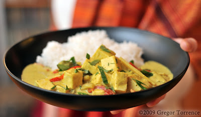 Thai Yellow Green Curry with Shrimp or Tofu | Ivy Manning