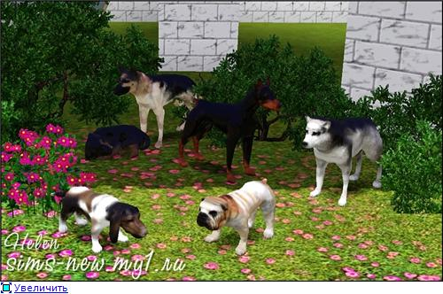 My Sims 3 Blog Decorative Dogs By Helen