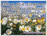 Selinhos Adorooo!!!