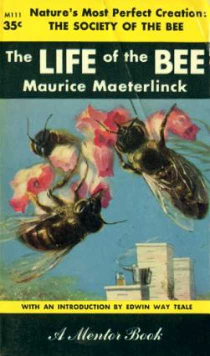 maurice maeterlinck life of space