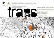 Proiectul Transfer 2008 I Transfer Project 2008