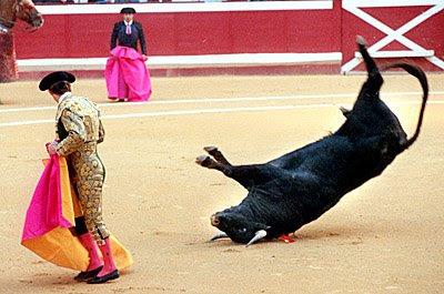 Bullfighting_1.jpg