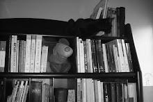 Los Gatos y los Libros