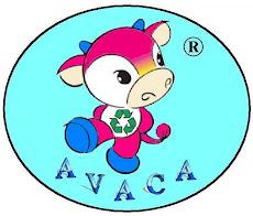 Ong Virtual AVACA