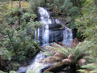 Part of Triplet Falls - Great Otway National Park