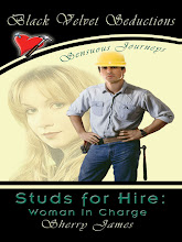 Studs for Hire: Woman in Charge