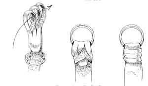 Agrego a continuación algunos libros más de su autoria intercalándolos con dibujos que forman parte del contenido bibliográfico.