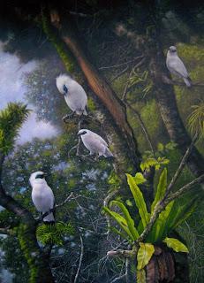 Burung Jalak Bali (2009)