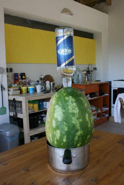 vodka-watermelon.jpg