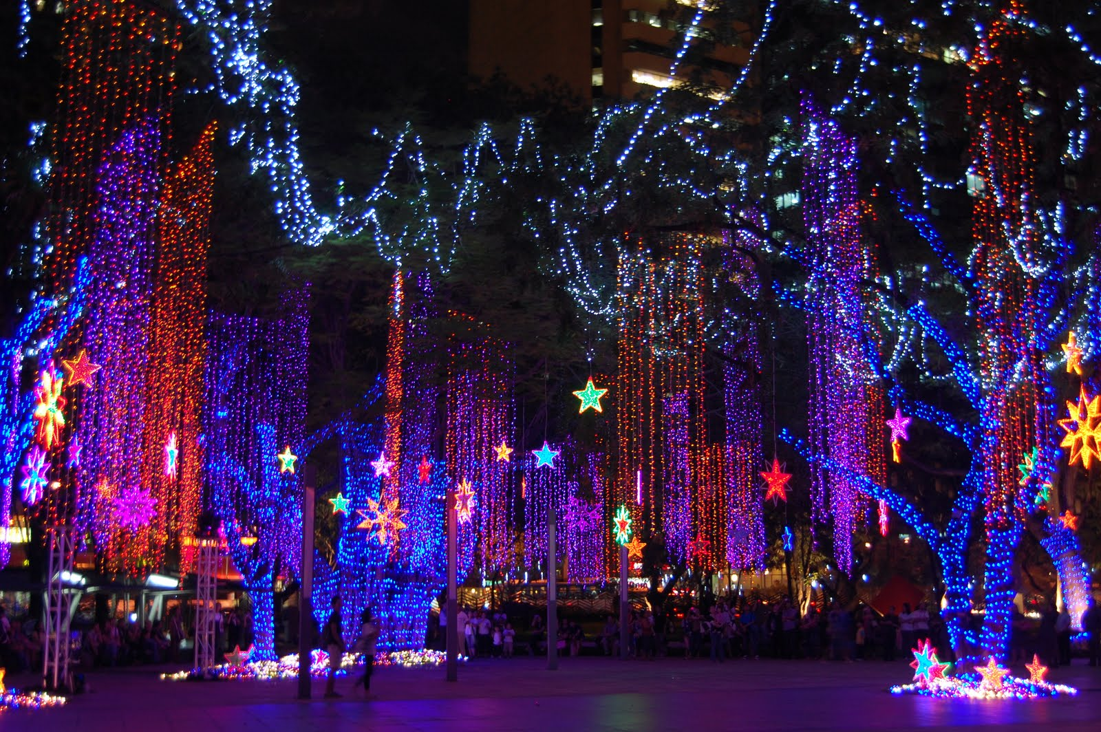 Symphony of lights ayala triangle gardens brain drain