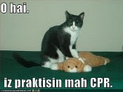 Oh hi! I'm practicing my CPR.