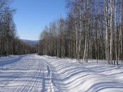 Old Ridge Trail