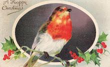 Glöm inte mata fåglarna i vinter!