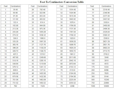 Virtual environments setting the units - Cm inches conversion table ...