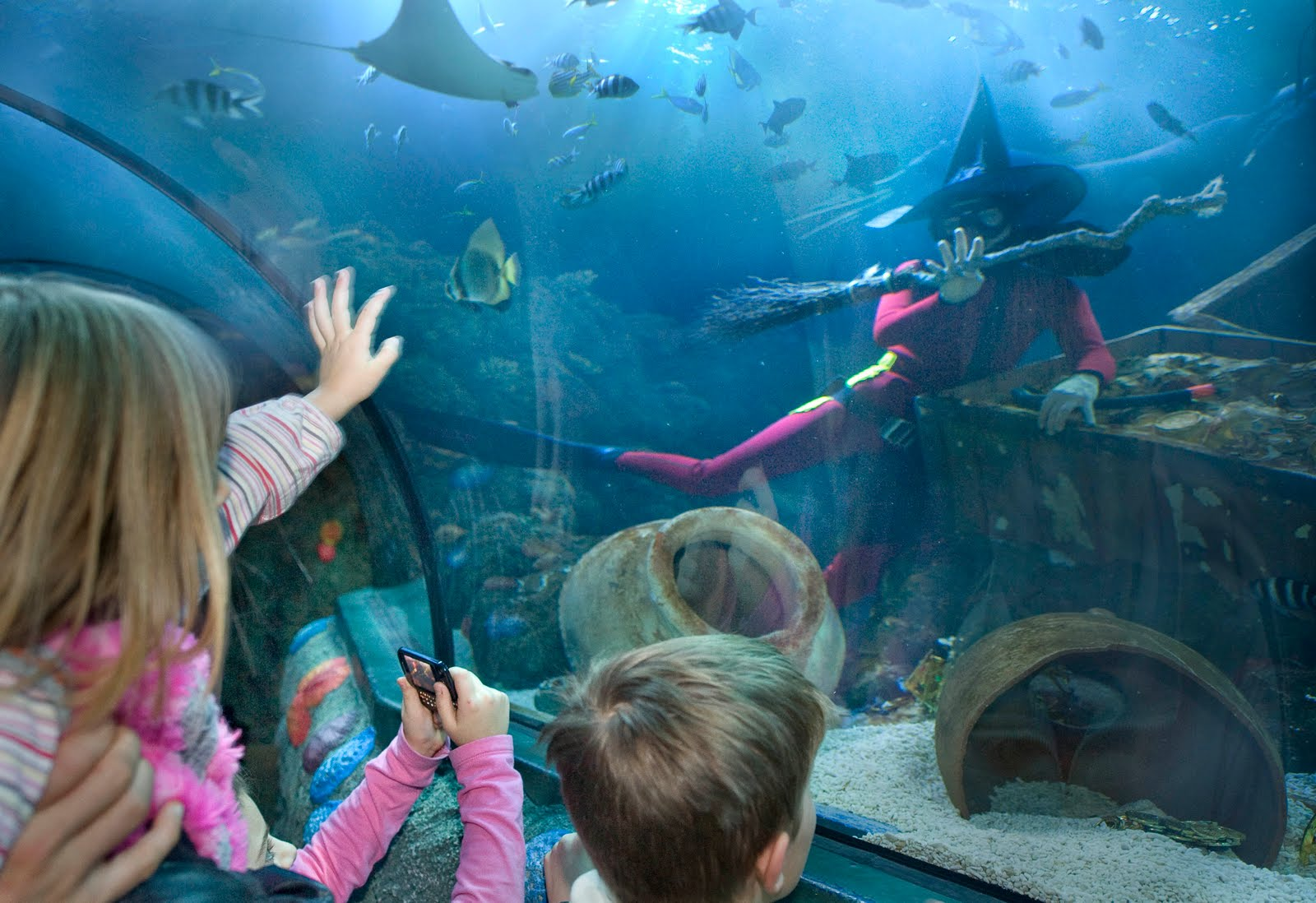 ... Travels: The Milan Aquarium Is Famous Place For tourist In Milan Italy