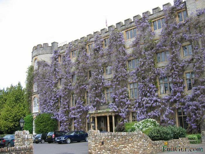 [Hotel-ritemail.blogspot.com3.jpg]