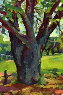 Oil painting of a tree / landscape in Austin,TX