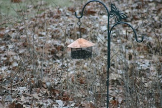 my little copper roofed feeder