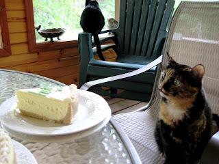 Kali ogles my cake