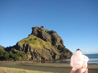 Street-Team-Marketing-Sumo-in-New-Zealand