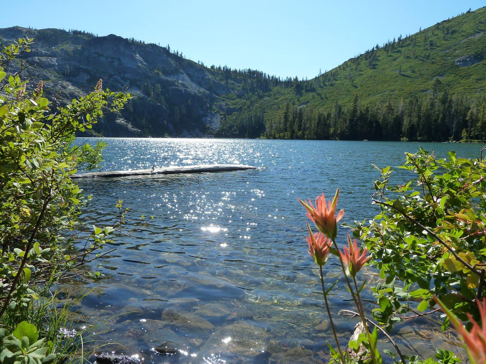 Lake siskiyou campground for Lake siskiyou resort cabins