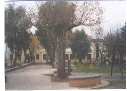 """Scuola Primaria """" A. Ciancia"""""""