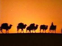 Cararavas del desierto