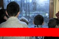 Scandalo in Albania: Italiani utilizzano i Bambini nella Caccia