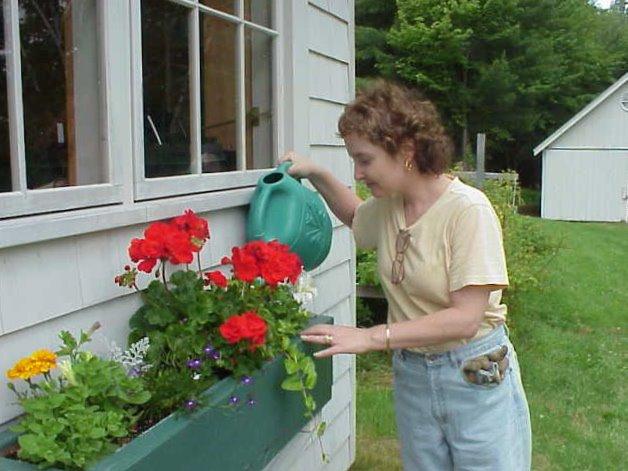 [kim+watering+flowerbox]