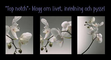 """""""Top notch""""- blogg om livet, inredning och pyssel"""