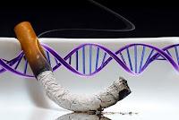 smoking in genes