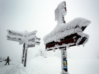 Foto Badai Salju Eropa Yang Mengagumkan