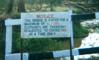 Elephants Should Cross Two At A Time Sign