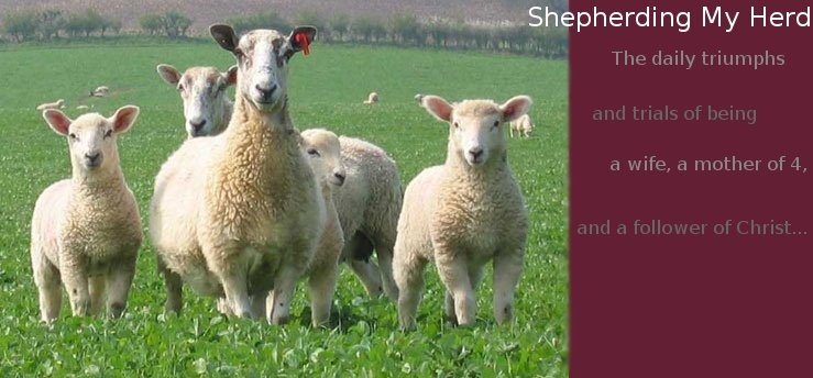 Shepherding My Herd