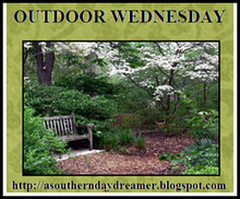 [Outdoor_Wednesday_logo.png]
