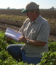 Tom Wagner in the potato field