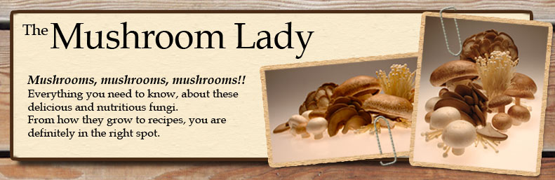 The Mushroom Lady