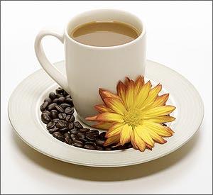 súper gano cafe